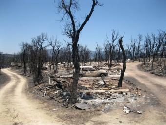 El càmping Les Pedres, cremat i del qual només s'ha salvat una caravana E. CARRERA