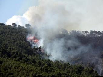 El foc de l'Alt Camp va arribar fins al terme municipal de Pontons, a l'Alt Penedès ROGER SEGURA / ACN