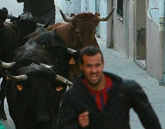 Un moment de l''Encierro' de Vidreres , on si bé hi ha qui va al davant dels bous, la majoria es queda al darerre MANEL LLADÓ
