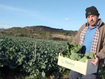 Salomó Torres a la finca, on hi conrea cebes, tomàquets, cols, bròcoli ecològiques per a Hortec.  JUDIT FERNÀNDEZ