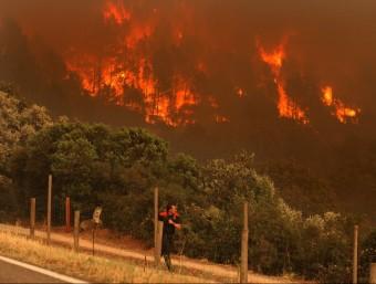 Els focs de l'Empordà van cremar deu mil hectàrees. LLUÍS SERRAT