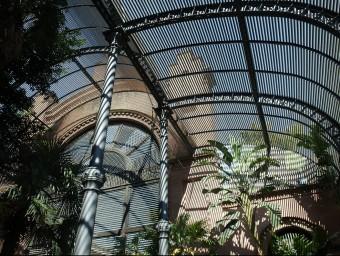 L'umbracle de la Ciutadella de Barcelona va ser projectat per Josep Fontseré i Mestres.  ARXIU