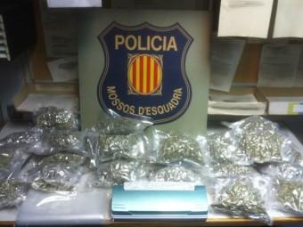La droga comissada pels mossos a Vidreres EL PUNT AVUI