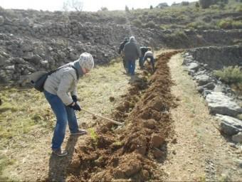 Uns joves participen en la preparació del terreny per a la replantació. EL PUNT AVUI
