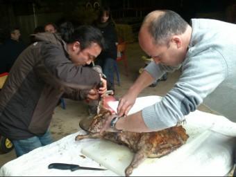 Els xefs Masashi Iijima del 5ème Péché i Jean-Louis Ricart de la Prefectura, tallant el cabrit de l'Albera a Les Illes A.R