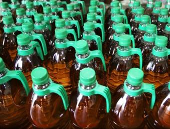 Ampolles d'oli de la Denominació d'Origen Empordà. LLUÍS SERRAT