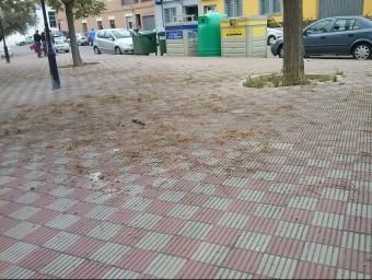 Aspecte de la plaça Tinença de Miravet reblida de brutedat. CEDIDA