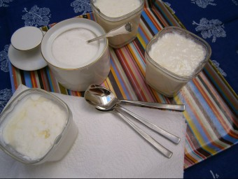El iogurt pot servir per comparar-lo amb altres objectes per demostrar que del no sentit es pot passar al tenir sentit.  ARXIU
