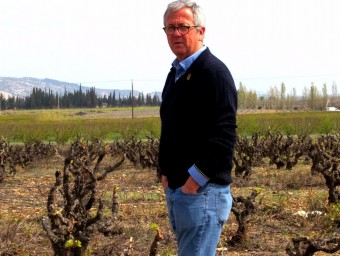 Josep Maria Pujol-Busquets, propietari d'Alta Alella, envoltat de les vinyes del celler.  L'ECONÒMIC