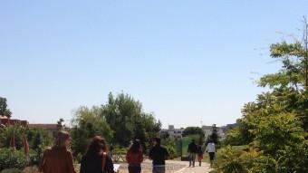Un passeig pel món forestal és el que els visitants es troben a l'Arborètum de Lleida. ARXIU