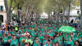 L'onada verda a Palma ACN