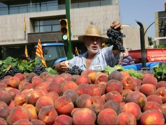Entre els anys 2005 i 2012 les exportacions de fruita augmenten quasi un 60%.  ARXIU