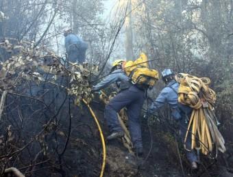 Els bombers lluitant ahir contra el foc a la zona de Foixà Tània Tapia / ACN