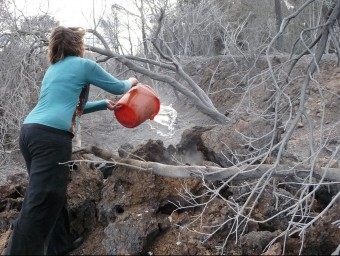 La mestressa de la granja d'en Pere Ferrer tira cubells d'aigua a les brases perquè s'apaguin del tot Ò. PINILLA
