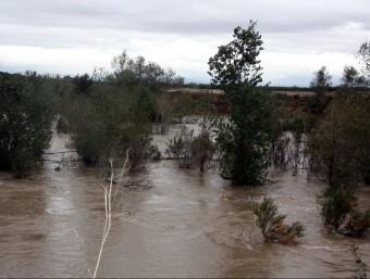 El riu Fluvià, al seu pas per la zona de Sant Miquel de Fluvià, aquest dilluns a la tarda ACN