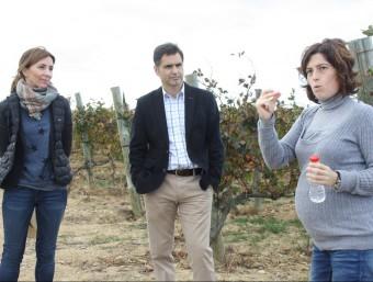 Visita al celler la Vinyeta de Mollet de Peralada, amb la cofundadora -la Marta- en plena explicació JOAN PUNTÍ