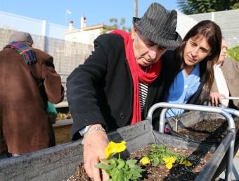 Al centre sociosanitari que gestiona la Fundació Sant Joan de Déu a Esplugues s'ha posat en marxa un hort terapèutic gràcies a donacions JUANMA RAMOS
