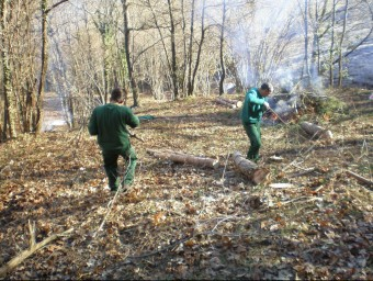 Persones en situació de risc social fan taques d'estassada d'arbustos, en una imatge d'arxiu.