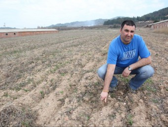 Enric Domènech ultima les feines per conrear patates de Prades.  J. FERNANDEZ