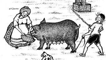 Una de les il·lustracions , la dels Metges, de Llenas Llensa del llibre EDICIONS SIDILLÀ
