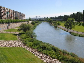 Parc del riu Segre, que serà un dels eixos centrals de la nova ronda verda de Lleida J.TORT