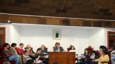 Sessió plenària de l'Ajuntament. EL PUNT AVUI