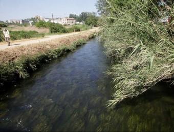 Un tram de la sèquia Monar, a tocar de les hortes de Santa Eugènia de Girona, un dels tres municipi per on discorre, com ho fa a Salt i a Bescanó JOAN SABATER