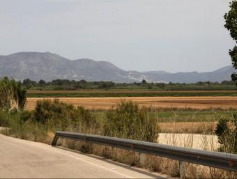Els terrenys on s'ha de construir la granja de porcs estan a la carretera entre Vila-sacra i Vilanova dela Muga. JOAN SABATER