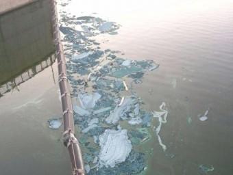 Restes d'algues en procés de fermentació aparegudes al pantà de Riba-roja PROTECCIÓ CIVIL