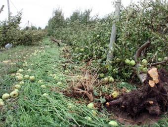 Greus destrosses en granges i conreus i nuclis del Segrià