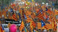 La manifestació va col·lapsar el centre  de Barcelona, amb predomini d'estelades i consignes independentistes. Hi van assistir els presidents Maragall, Pujol i Montilla, i es van habilitar prop de 600 autocars per poder-hi assistir