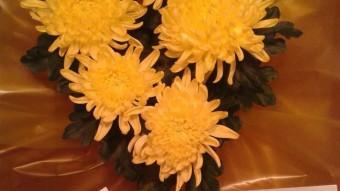 Els crisantems grocs i la targeta que va rebre l'alcalde Albiol. ANC