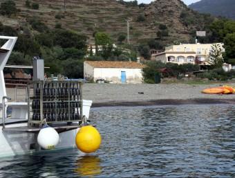 La gàbia on hi ha les primeres 189 ampolles de cava de criança submarina sostinguda per un vaixell, amb la cala Jóncols de fons. ACN