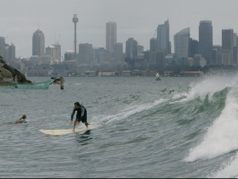 Surfer in Sydney harbour with the city skyline behind.  AP