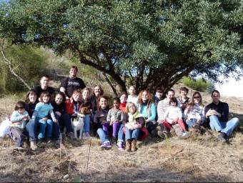 Treballadors de l'empresa Tarannà van plantar més de 15 arbres amb la fundació +Árboles.  ARXIU