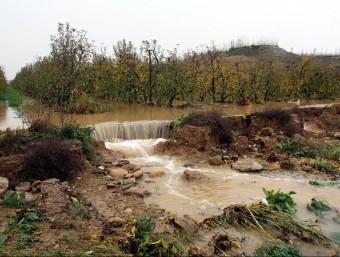 Un camp d'arbres fruites a Malpartit, al terme municipal de Torrefarrera, ple d'aigua procedent de l'aeroport de Lleida-Alguaire ACN