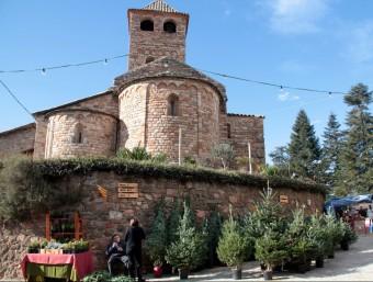 La variant que més es ven és el 'Masjoanis', un avet autòcton d'Espinelves i que és un empelt entre un avet de les Guilleries i un avet andalús ACN
