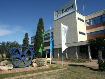 Seu tarragonina de la multinacional alemanya Bayer.  ARXIU