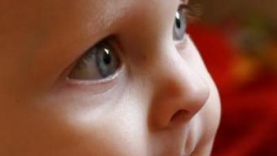 Els nadons ja comprenen els gestos abans de la parla oral SINC/MILAN JUREK