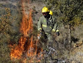 Els tècnics cremant matolls a la zona del Serradell, al Pallars Jussà M.LLUVICH / ACN