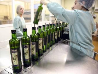 El programa europeu Comedpro incentiva l'activitat de les petites i mitjanes empreses de Catalunya, Israel i Sardenya productores d'oli i de vi.  ARXIU