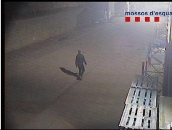 El lladre captat per les càmeres de seguretat a l'empresa de l'Estartit,