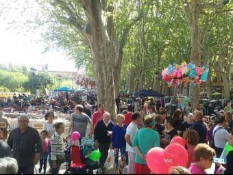 Trobada d'escoles a l'albereda de Xàtiva. CEDIDA ESCOLA VALENCIANA