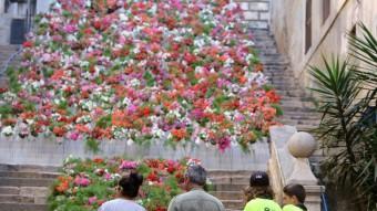Preparatius de Temps de Flors. MANEL LLADÓ