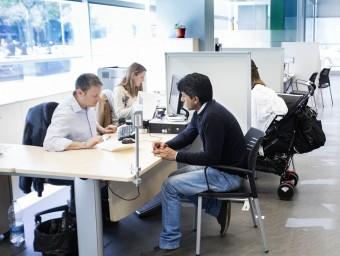 Orientar les taules de l'oficina per aprofitar la llum natural és un mètode senzill d'estalvi energètic.  ARXIU