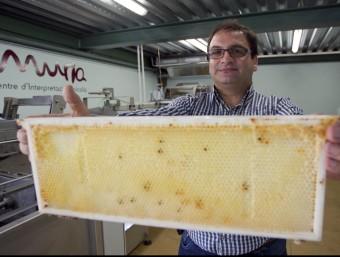 Rafel Múria mostra una de les seues arnes al centre d'interpretació de la mel del Perelló. JOSÉ CARLOS LEÓN /ARXIU