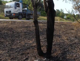 La zona  que va quedar afectada a Vilopriu JORDI RIBOT (ICONNA)