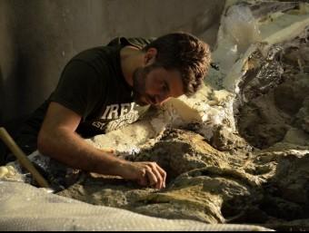 Un paleontòleg netejant un fòssil de dinosaure.  ACN