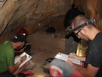Arqueòlegs treballant a la Cova dels Tritons, al municipi de Senterada, on han trobat restes d'animals i indicis de presència humana IPHES