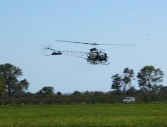 L'helicòpter durant l'aplicació de saponines a l'arrossar de Fonclara EL PUNT AVUI
